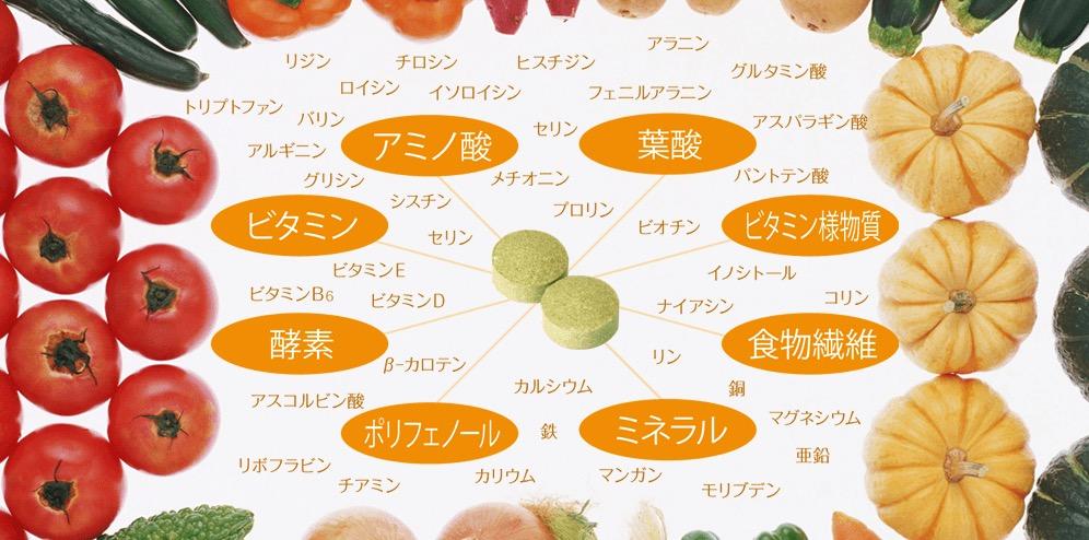 酵素青汁111選の成分・副作用