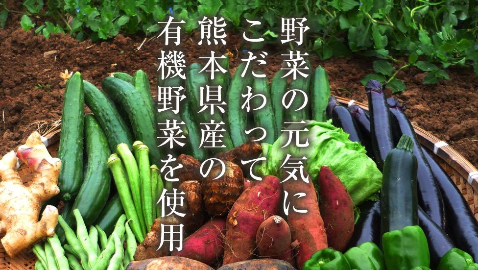 みやびの植物酵素100と他の酵素の違い